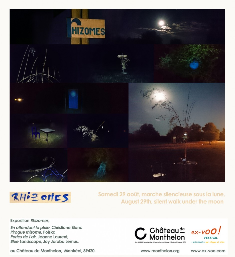 carte de nuit Rhizomes